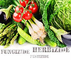 Giftcocktail im Gemüse: Pestizide, Fungizide & Co.