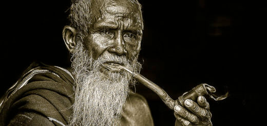 Altern – warum wir nicht unsterblich sind