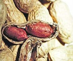 Erdnüsse helfen gegen Diabetes