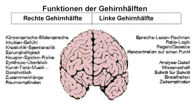 Gehirnfunktionen