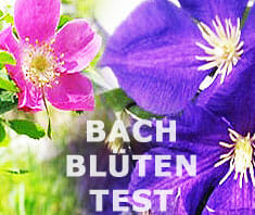 Bach-Blütentest – 38 Bach-Blüten-Essenzen