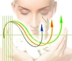 Gesundheit: Berechnen Sie Ihren Biorhythmus