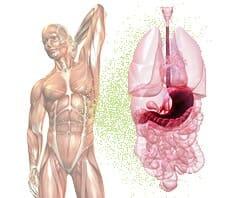 Magenschleimhautentzündung