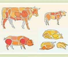 Fleisch, Geflügel