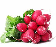 Kraut und Rüben: Ernährungsinformationen