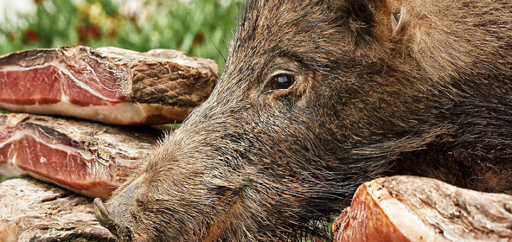 Wildschweinschinken mit Ziegenkäse | Rezept