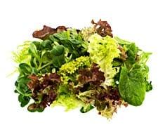 Gemüse-ABC – Gemüsesorten im Überblick