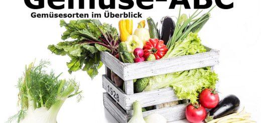 Gemüse-ABC: Gemüsesorten im Überblick