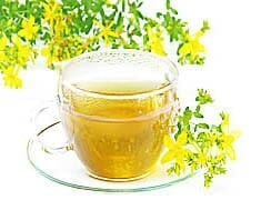 Johanniskraut | Heilpflanzenlexikon