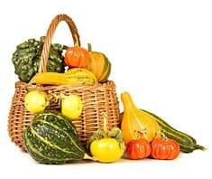Kürbis: kalorienarm und gesund