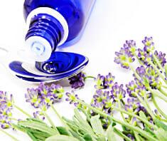 Lavendel, Echter Lavendel, Hausmittel