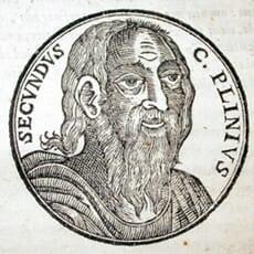 Plinius der Ältere, Geschichte der Zahnpflege