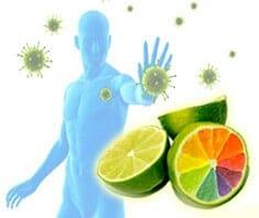 Nährstoffkombinationen, Immunabwehr