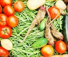 Bio-Produkte, Bio-Lebensmittel, biologische Produktion