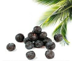 Acai Beere, Vitamin C, gesund