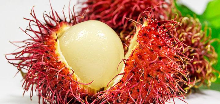 Rambutan: exotische Früchte im Überblick
