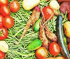 Saisonale Obst und Gemüse