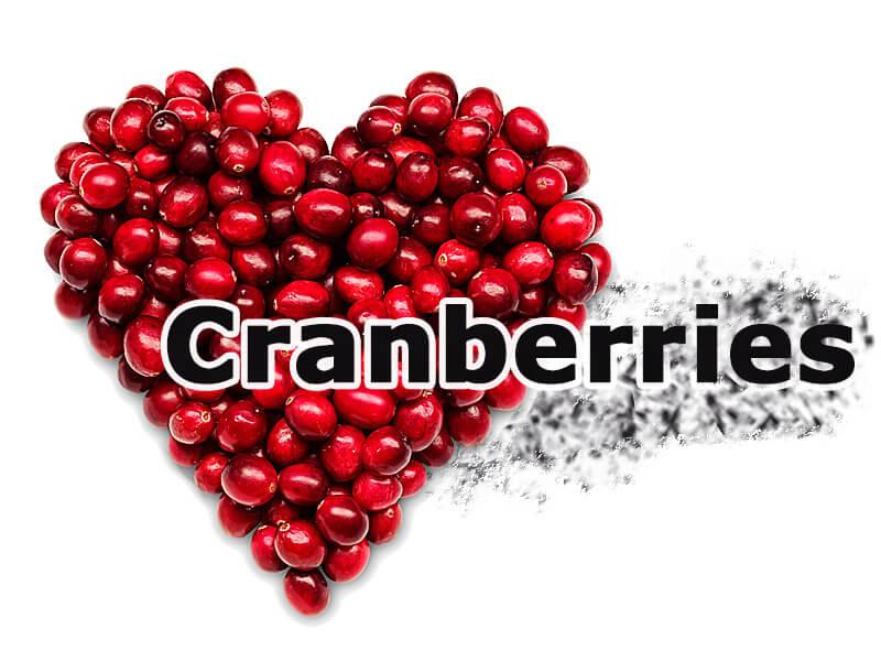 Gesunde Cranberries dank bioaktiver Substanzen