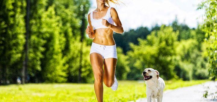 Sport mit dem Hund: Wie werde ich gemeinsam mit meinem Hund fit?