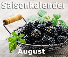 Saisonkalender Obst & Gemüse   August