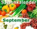 Saisonkalender Obst & Gemüse: September