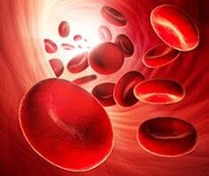 Blutgerinnung