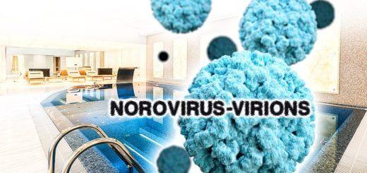 Bakterien & Viren im Swimmingpool