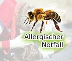 Allergischer Notfall - was tun?