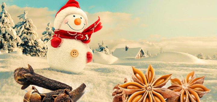 Weihnachtliche Gewürze sind gesund - Naschen mit Verstand