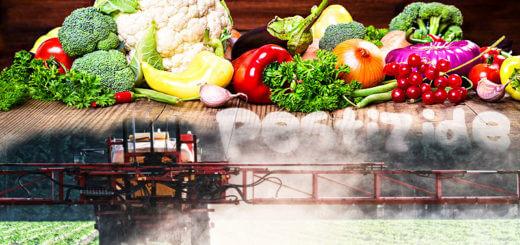 Pestizide, Geschmacksverstärker & Konservierungsstoffe ohne Ende