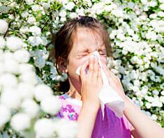 Pollenallergie - was ist das eigentlich?