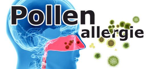 Pollenallergie – was ist das eigentlich?