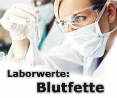 Blutfette - Laborwerte