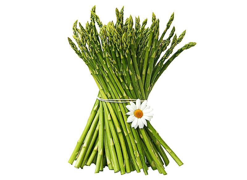 Spargel als Heilpflanze