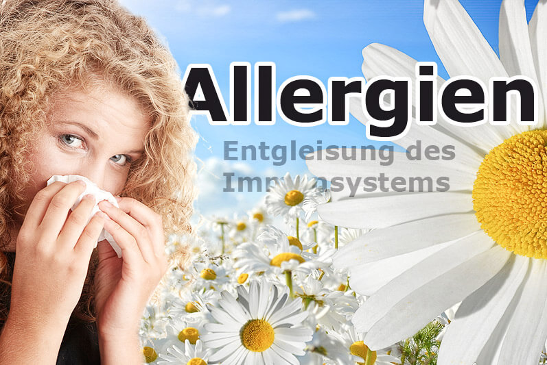 Allergien – Entgleisung des Immunsystems