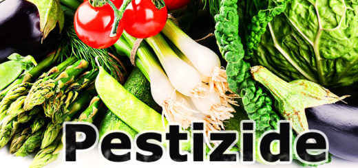 Pestizide, Fungizide & Co. - Giftcocktail im Gemüse