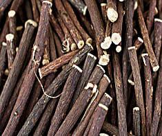 Süßholz | Heilpflanzenlexikon