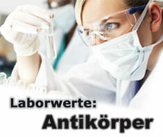 Antikörper (Immunglobuline) | Laborwerte