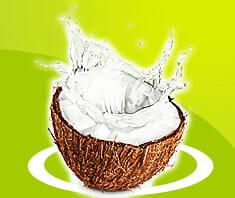 Kokoswasser – Superdrink!?