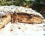 Schoko-Palatschinken Torte | Rezept