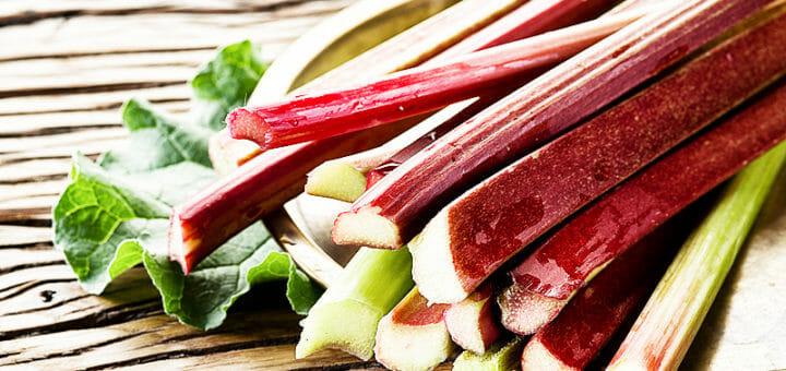 Rhabarber - süßes Gemüse, vielseitig und gesund