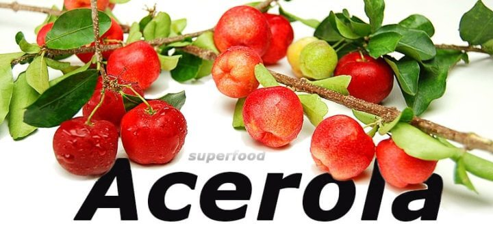 Superfood Acerola - Vitamin C Wunder aus Übersee