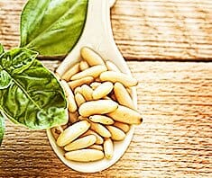Pinienkerne: teuer, aber gesund & gut