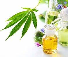 Leinöl und Cannabisöl - die unbekannten Speiseöle