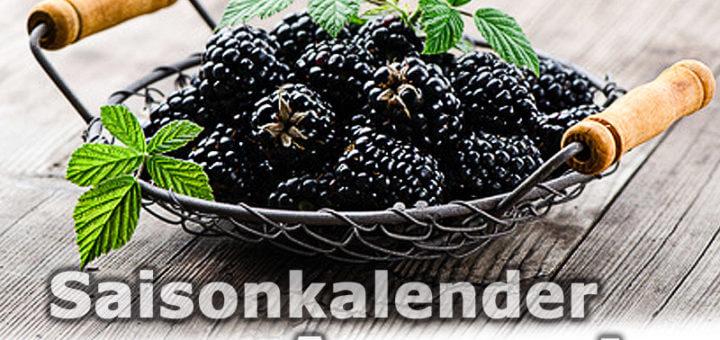 Saisonkalender Obst & Gemüse | August