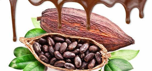 Ist Schokolade gesund?