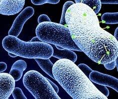 Phagen gegen bakterielle Infektionen
