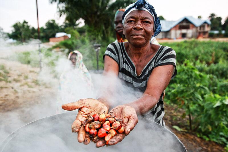 Palmöl - Gewinnung im Kongo
