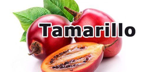 Tamarillo - eine Beerenfrucht namens Baumtomate