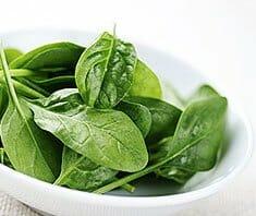 Spinat – regionales Superfood mit dem gewissen Etwas